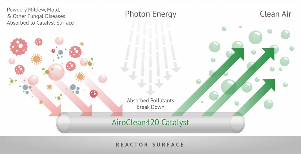 Diagram of how AiroClean420 works